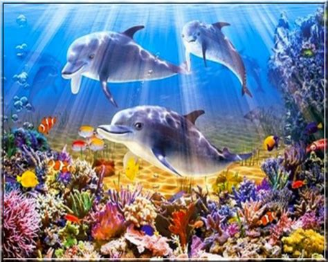 fond d ecran aquarium gratuit anime desktop background fond d 233 cran anim 233 gratuit aquarium