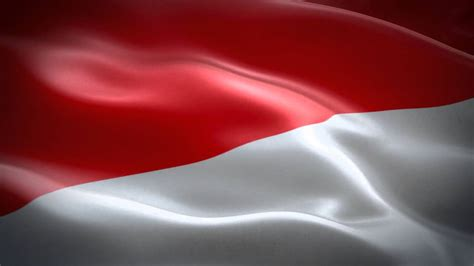 animasi bendera indonesia hd video background youtube