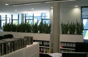 Büro Pflanzen Pflegeleicht : raumbegr nung innenraumbegr nung objektbegr nung terrassenbegr nung lechuza fiberstone ~ Michelbontemps.com Haus und Dekorationen