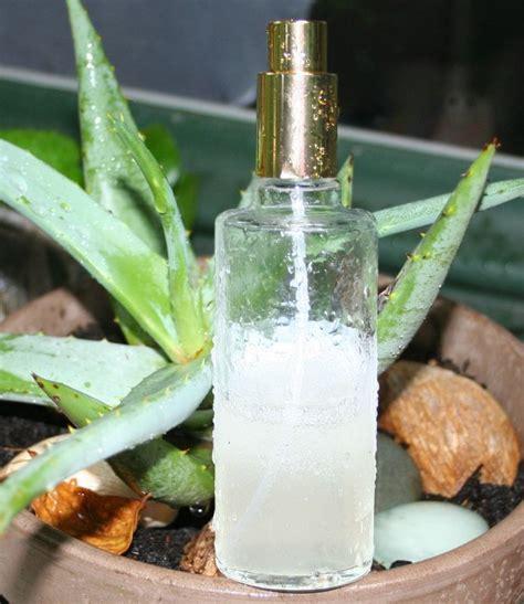 spray hydratant pour cheveux secs recettes de