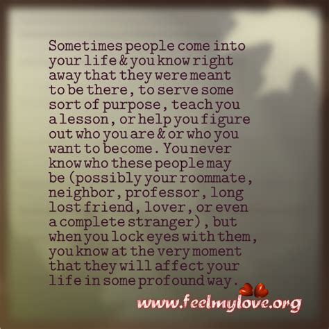 Sometimes People Come Into Your Life Quote