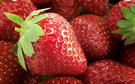 Fresh Fruit Desktop Backgrounds 1920x1200