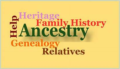 Tree Experience Gift Research Ancestry Learn Use