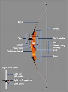 Recurve Bows  Bows And Archery On Pinterest