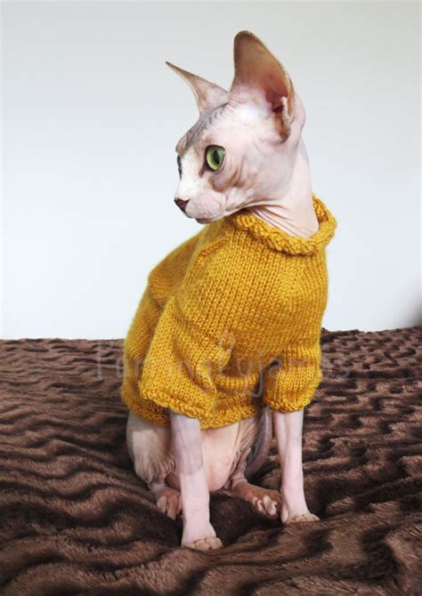 cat sweaters for cats 8 ways to embarrass your pets this season