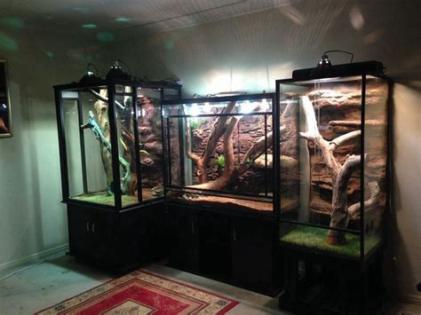 Bearded dragon pick the enclosure size? Be cool as one solid unit... frilled dragon enclosure - Google Search #beardeddragoncagediy ...