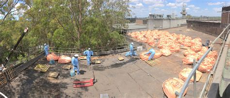 bonded friable asbestos services sydney perfect