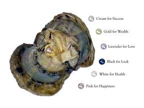 allergy earrings wish pearl in oyster