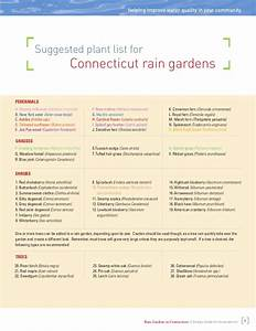 Connecticut Rain Gardens Manual