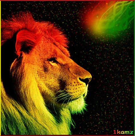rasta hd desktop wallpaper high definition fullscreen