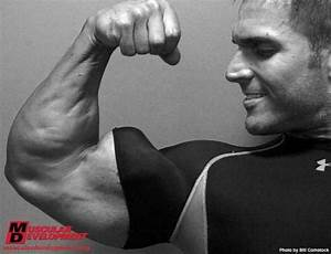1000  Images About Bodybuilding On Pinterest