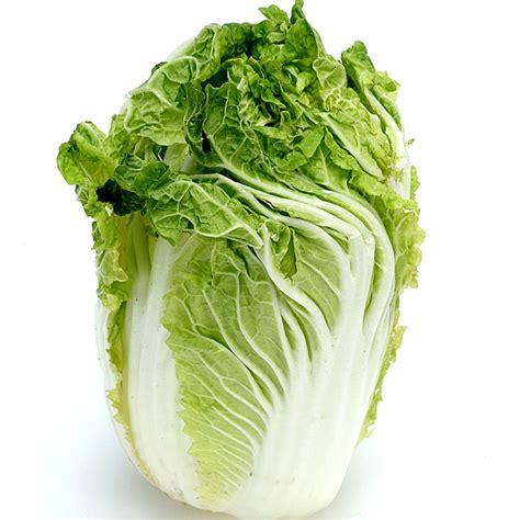 cuisiner un choux chinois tous les légumes de saison à cuisiner au mois de février