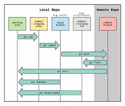 Git Workflow Diagram Remote Role Tracking Origin