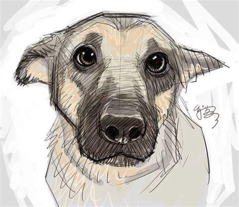 draw  gotta draw art drawings puppy eyes