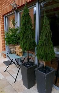 Weihnachtsdeko Draußen Basteln : b ume aus tannenzweigen binden weihnachtsgarten ~ A.2002-acura-tl-radio.info Haus und Dekorationen