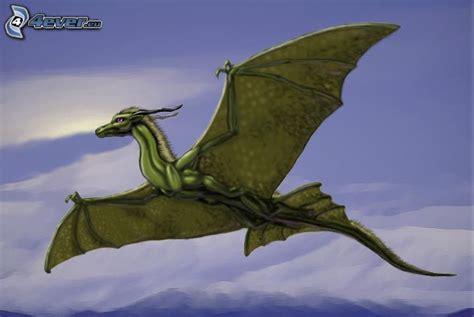 drago volante volant