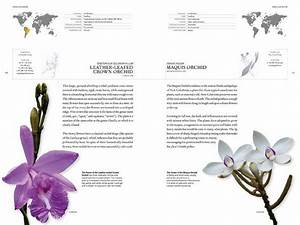 The Book Of Orchids  A Life