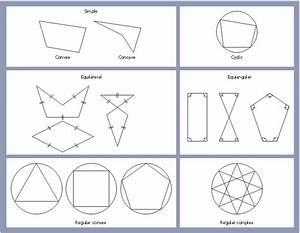 Polygon Types