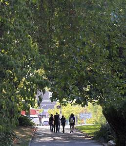 Old Denny Park gets new life with growth of South Lake ...