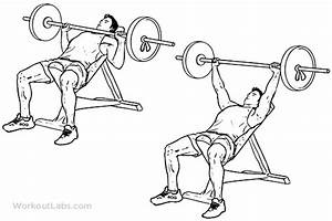The BEST Chest Exercises For Building Muscle Mass - Ignore ...