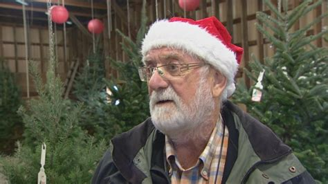 pine meadows christmas tree farm b c trees drought could impact future harvests says grower cbc news