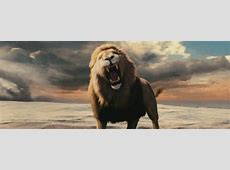 Roar GIF Find & Share on GIPHY