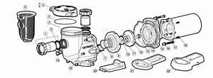 Hayward Tristar Parts
