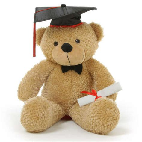 life size graduation teddy bears personalized gifts