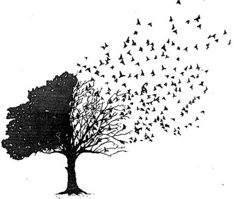 tree into birds tattoo tattoos pinterest