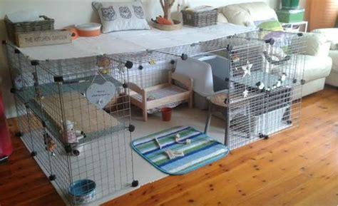 Gitter Würfel Gehege Kaninchen  Kaninchen Ratgeber