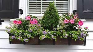 Blumenkästen Bepflanzen Ideen : blumenk sten bepflanzen so klappt es mit der bl tenpracht ~ A.2002-acura-tl-radio.info Haus und Dekorationen
