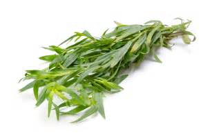 essential pantry tarragon the hungry goddess