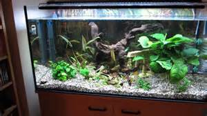 pin aquarium neon licht led beleuchtung on