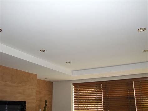 suspended replacement ceilings