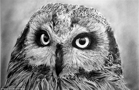 realistic drawing  animals