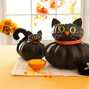 is pumpkin for cats cat pumpkin for allyou
