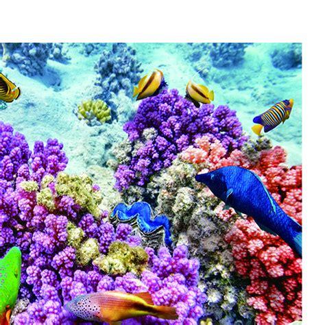 pvc aquarium background poster fish tank decorations