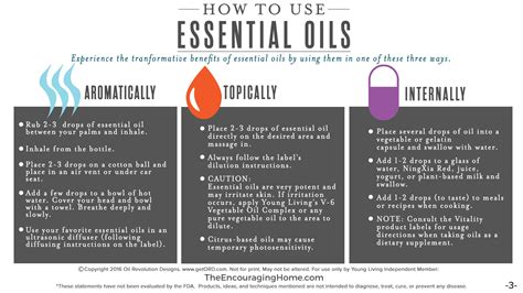 All About Essential Oils  The Encouraging Home  Encouragement  Healthy Living  Taking Care