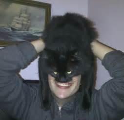 batman cat batman cat mask