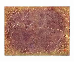 The gallery for --> Red Veins Texture