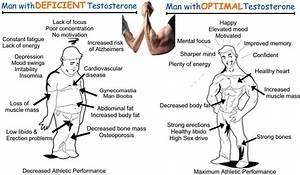 Levels Of Testosterone As Per Age  U2013 Why This Hormone Is Essential In Our Body