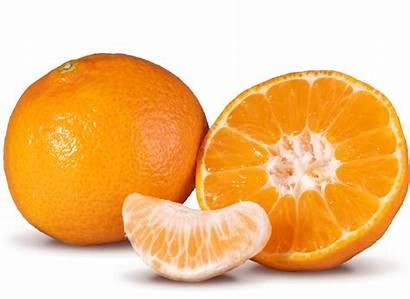 Citrus Clementines Patensie Soft