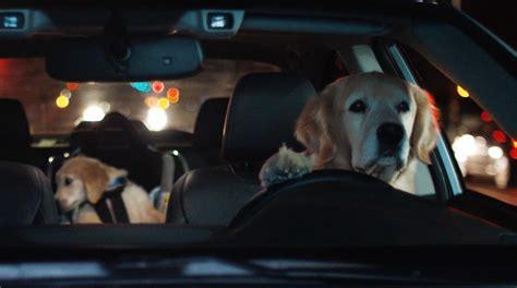 Subaru's Driving Dog Family Returns For