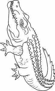 Crocodile Coloring Pages To Download And Print For Free