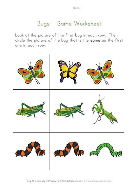 31 Best Images About Preschool  Bugs & Insects On Pinterest  Emergent Readers, Caterpillar And