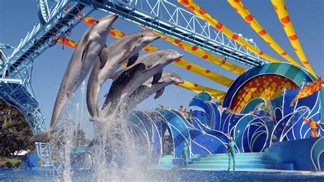 Seaworld San Diego California Expedia