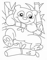 Panda Coloring Pages Bear Printable Climber Sheets Adult Bestcoloringpagesforkids Adults Cartoon Bears Colorings Getcolorings Christmas Library Clipart Popular sketch template