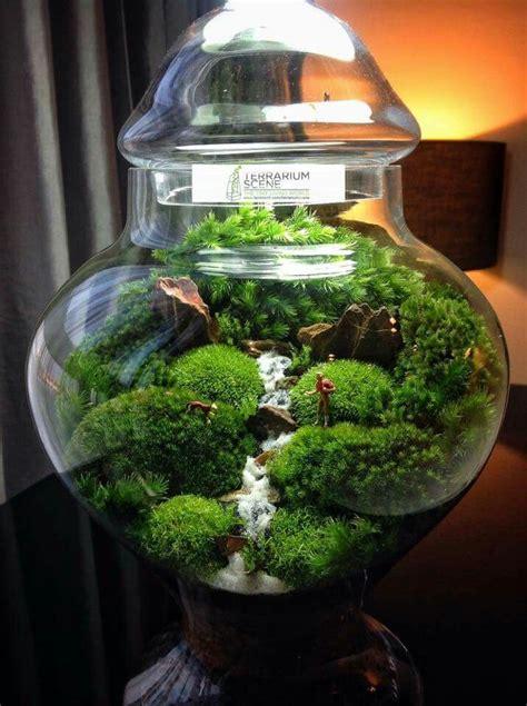 mahmut kirnik bonsai terrarium jar terrarium