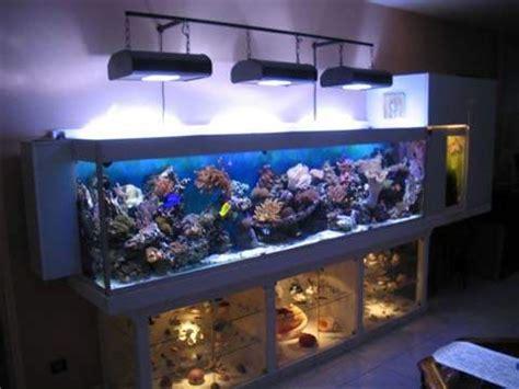 r 201 cif aquariophilie eau de mer aquarium r 233 cifal aquarium marin