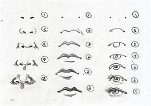 Realistic Nose Drawing Steps 1000 Images About Noses On ...